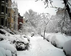 Northeast expecting history making monster blizzard Juno with three feet of snow http://www.examiner.com/article/northeast-expecting-history-making-monster-blizzard-juno-with-three-feet-of-snow