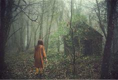 Aëla Labbé - Winter Mist