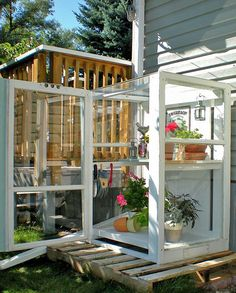 Upright cold frame from old windows, set on a pallet. Good for starting seedlings. Great way to re-use old windows.