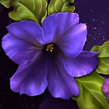 Moonbeam's Petunias...for my Granny 2D 3D Models moonbeam1212