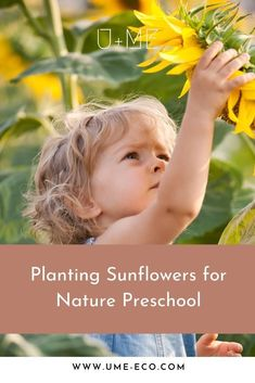If youre looking for nature play ideas for your kids, learn how to plant sunflowers for nature preschool with these tips Outdoor Learning, Outdoor Play, Kids Learning, Planting Sunflowers, Eco Garden, Sweet Text Messages, Play Ideas, Educational Activities, Growing Vegetables