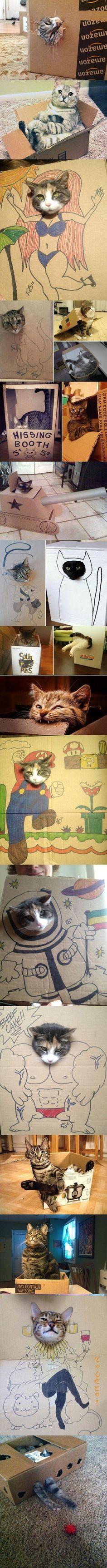 #funny #cats #cutest #cat #sweet #animals #lovely #carton Follow me :) ✧ ☾ @ Sky Paradise @ ☾✧