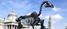 The new controversial Gift Horse by German artist Hans Haacke has been unveiled on Thursday 5 March 2015 in London's Trafalgar Square.