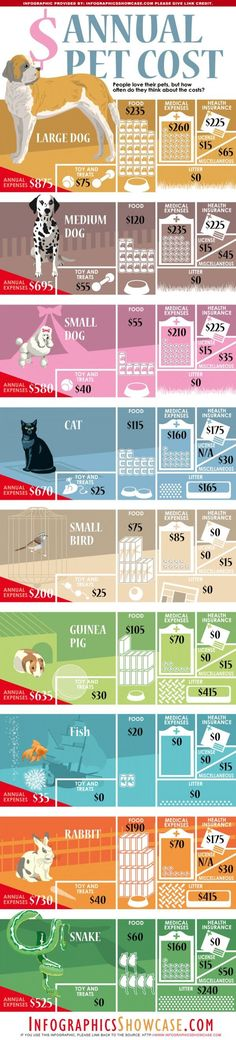 Trying to decide what size dog to adopt? Or whether to have a dog or cat? Perhaps this financial analysis will help.