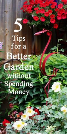 Would you like to freshen up your garden without spending money? These 5 tips share ideas for making use of what you already have to bring pleasing and creative changes to your outdoor living space. #sponsored