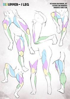 De 25+ bästa idéerna om Armanatomi – bara på Pinterest   Anatomireferens, Benanatomi och ...