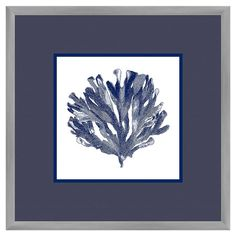 Add a nautical touch to your bathroom or living room with this framed giclee print, featuring a navy coral motif.   Product: Fra...