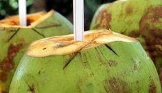 Чем свежее кокосовая вода, тем лучше для Вас! Как только она подвергается воздействию воздуха и теплой температуры, она быстро портиться и теряет свою ценность в питании. Кокосовая вода — это не вода с добавленным кокосовым вкусом, а прозрачная жидкость внутри кокоса. А кокосовое молоко представляет собой эмульсию из кокосовой воды и натертого свежего кокоса. Поэтому …