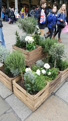 Apple crate planter ideas seen in Covent Garden garden planters from pall Herb Garden Pallet, Pallets Garden, Diy Planters, Garden Planters, Planter Ideas, Covent Garden, Apple Crates, Garden Boxes, Garden Projects