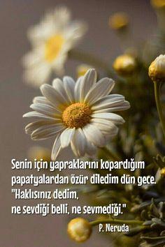 Learn Turkish Language, Maybe Tomorrow, Cool Words, Karma, Literature, Daisy, Poems, Peace, Writing