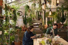 airbnb + Pantone: departamento con vegetación en Londres. « DArA – Diseñadores de Interiores Argentinos Asociados