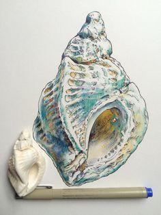 A level art inspo n ting. Gcse Art Sketchbook, Observational Drawing, Sea Art, Sea Life Art, A Level Art, Sketchbook Inspiration, Art Inspo, Painting & Drawing, Art Reference
