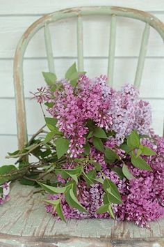 Lilacs... just like my grandma used to have growing next to her porch. I had to flu in the spring and my Grandma have a bouquet of lilacs....