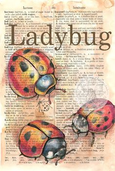 PRINT: Ladybug Mixed Media Drawing on Distressed, Dictionary Page - Watercolor Inspiration on Pages - Elektronics Journal D'art, Art Journal Pages, Art Journals, Kunstjournal Inspiration, Art Journal Inspiration, Book Page Art, Book Art, Altered Books, Altered Art