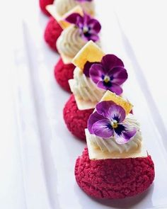 Fleurs et choux #chocolat #instagram #instalife #instagood #instadaily #instagold #instagram #instagramers #vscophile #instadaily #instalike #instaday #foodcoma #it #love #patisserie #foodie #pastry #foodgasm #cake #food #desserts #tasty #foodstagram #vscocam #vsco #vscogram #vscostyle #vscodaily #foodstagram #vscolovers #vscofood .
