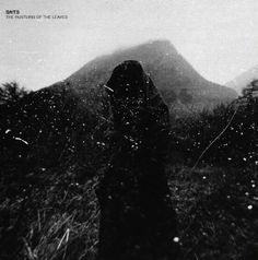 SNTS - The Rustling Of The Leaves (Vinyl, Album) at Discogs