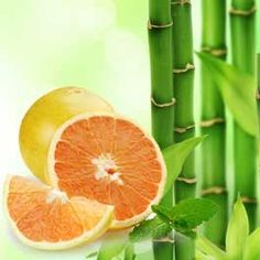 Bamboo and White Grapefruit Fragrance Oil from Nature's Garden is a very strong aroma that will give you bath and body products an amazing scent. Candle Making Supplies, Soap Making Supplies, Wholesale Fragrance Oils, Soap Colorants, Aroma Beads, Bath Gel, Candlemaking, Kit, Soy Wax Candles