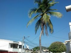 Cartagena y su buen clima