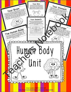 Human Body Unit  from 24 7 Teacher on TeachersNotebook.com (14 pages)