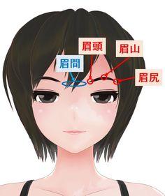 眉毛の部位の呼称