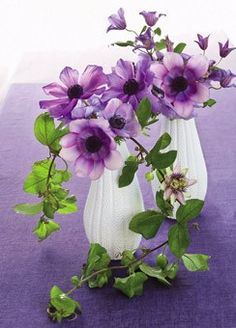 Seaside style - Sea urchin vases filled with clematis, anemones and violet passion vine, they are a part of the tables' free-form centerpieces Shades Of Purple, Purple Love, Green And Purple, My Flower, Purple Flowers, Beautiful Flowers, Lavender Flowers, Ikebana, Color Lila