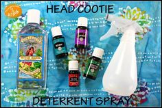 Lice Deterrent Spray using Young Living Lavender, Rosemary, Tea Tree and Eucalyptus Essential Oils