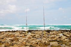 TBRSEIS - Park 2 (Fishing) 2 | Flickr - Photo Sharing! Turtle Bay Resort, Wind Turbine, Fishing, Park, Parks, Peaches, Pisces, Gone Fishing