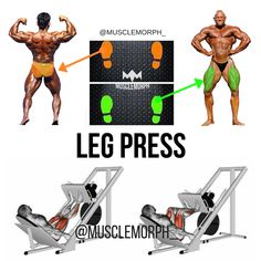 LEG PRESS POSITION LEG PRESS MACHINE LEG PRESS LEG DAY MUSCLE  GYM MUSCLMORPH MUSCLEMORPHSUPPS.COM