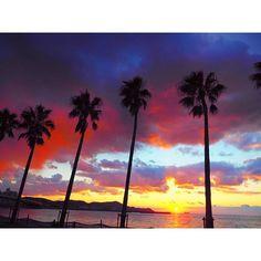 【miki.azusa】さんのInstagramをピンしています。 《* また体調は万全ではないけども、 明日から仕事やし、 身体を慣らすためにも海へ🐚🌴🌊 * ステキな空色〜😳🌅 * * #また風邪ひくかと思った #滞在時間10分 #sunset #サンセット #夕日 #ビーチ #beaah #海 #浜の宮 #wakayama #love #空 #イマソラ #空好き #ピンク #beautiful #good #palmtrees #palm #ヤシの木 #癒し #カメラ女子 #happy #holiday #olympus  #goodnight》