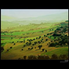 Agriscape - Marche, Italy | Osvaldo_Zoom