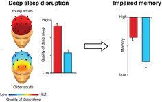 nature_sleep_disruption_graphic
