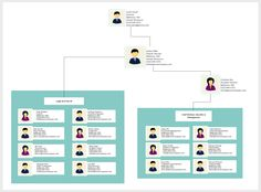Best Organizational Chart Templates Images On Pinterest - Professional organization chart template