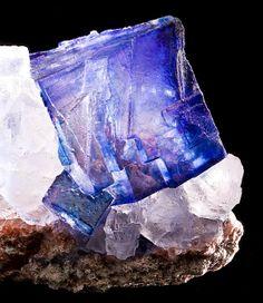 halite crystals | Halite | crystals