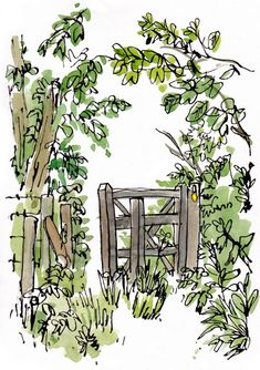 Ink and watercolour. Watercolour Drawings, Landscape Watercolour, Watercolour Illustration, Garden Illustration, Watercolor Sketchbook, Ink Pen Drawings, Pen And Watercolor, Watercolours, Forrest Drawing