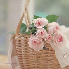 Pure Pink Romance.