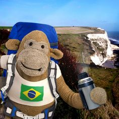 Monkey: Road to Brazil Pg Tips, Monkeys, Brazil, Tea, Random, Character, High Tea, Jumpsuits, Monkey