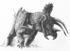 ANGRY, QUIFF-TAILED CERATOPSIAN.1: TRICERATOPS by SharkeyTrike