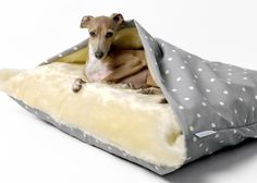 Buy Snuggle Bed - Dotty Dove Grey from Charley Chau, part of our fantastic range of Beds for dogs. Standard Dachshund, Mini Dachshund, Working Cocker, Bed Liner, West Highland Terrier, Italian Greyhound, Sleeping Dogs, Leather Dog Collars, Animals