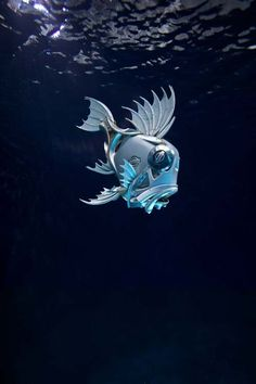 4. Here's a pic of my fish underwater at Pinewood studios. Fish are made from car hubcaps. Photo by Phoebe Rudonimo. Hubcap Creatures