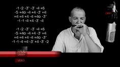 '' Combien de Gens ? '' - Florent Pagny - Harmonicas A et Bb
