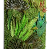 green wall with moss and palm leafs