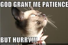 GOD GRANT ME PATIENCE BUT HURRY!!! -
