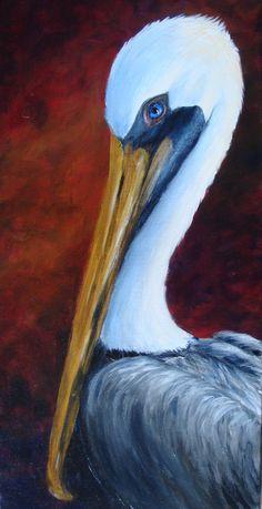Elaine's Pelican