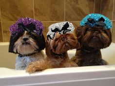 Bath/shower time.