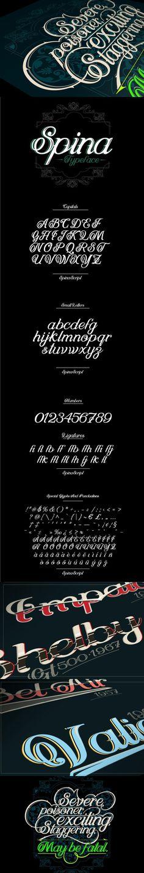 SPINA Script. Fonts. $26.00