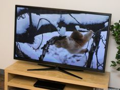 Samsung E6500 Reviews :: Reviewing.net - The Source Of All Reviews #reviews #tv #television