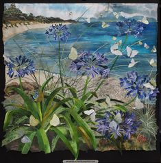 Agapanthus beside a Sandy Bay