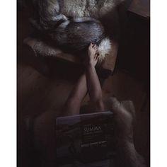 Šumava, beautiful and deadly   #travelwithmaya #dnescestujem #stayandwander #roamtheplanet #Exploretocreate #folkgood #folkvibe #mobilemag #wolfdog #exklusive_shot #czechoslovakianwolfdog #lifeofadventure #adventure