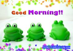 Cute Turtle Miss You Cards Funny Good Morning Greetings, Good Morning Greeting Cards, Good Morning Funny, Happy Birthday Greeting Card, Happy Birthday Images, Morning Words, Miss You Cards, Cute Turtles, Kids