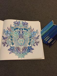 Enchanted Forest Book by Johanna Bashford